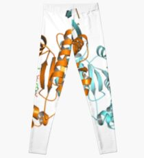 #Enzyme #Informatics, #EnzymeInformatics, #particle #chemistry #medicine #biology #science #biochemistry #shape #chemical #illustration #acid #connection #design #symbol #molecular #insect #horizontal Leggings