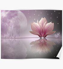 Magnolia Dreams Poster