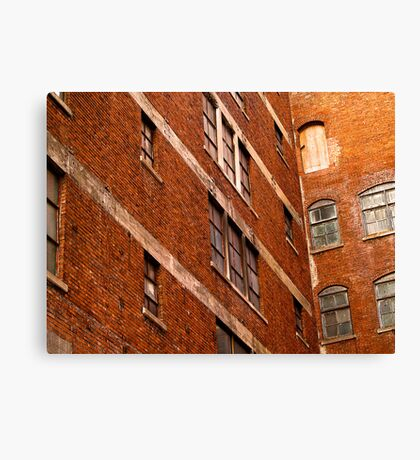 Nineteen Windows and a Door Canvas Print