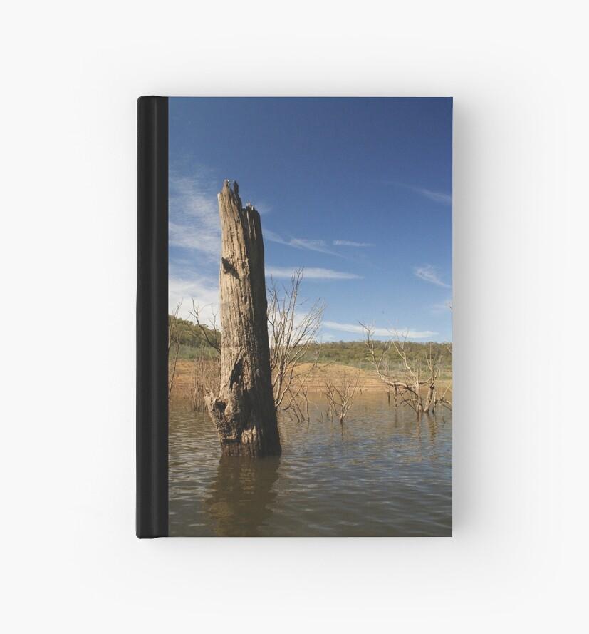 tree no more by cody Eiseman