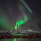 Lights above the Lyngenfjord by Mieke Boynton