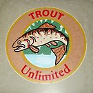 Trout on concrete by cdcantrell
