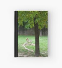 In The Park Hardcover Journal