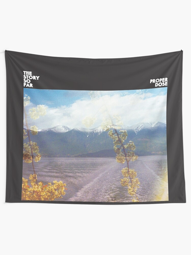 Alternate view of The Story So Far Proper Dose (Wall Flag size) Tapestry