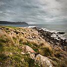 Marram Grass Point - Bruny Island, Tasmania by Liam Byrne