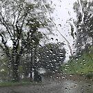 Rainy day by agnessa38
