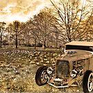 32 Ford St James's Park by Dane Walker