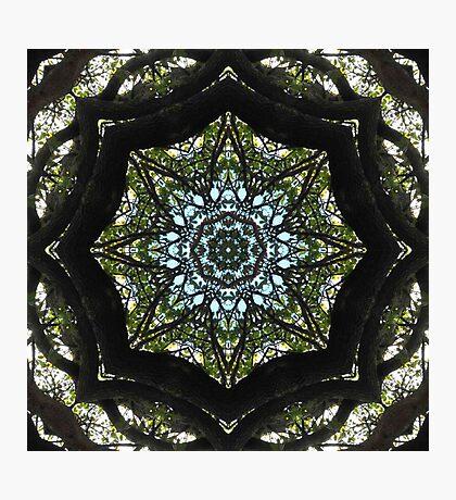 Kurious Kaleido 1 Photographic Print