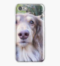 Teddie Boy iPhone Case/Skin