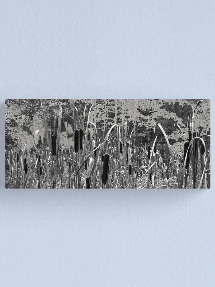 Alternate view of Cattails in the Painted Forest Canvas Print