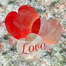 Happy Valentine's Day! by ivanoel