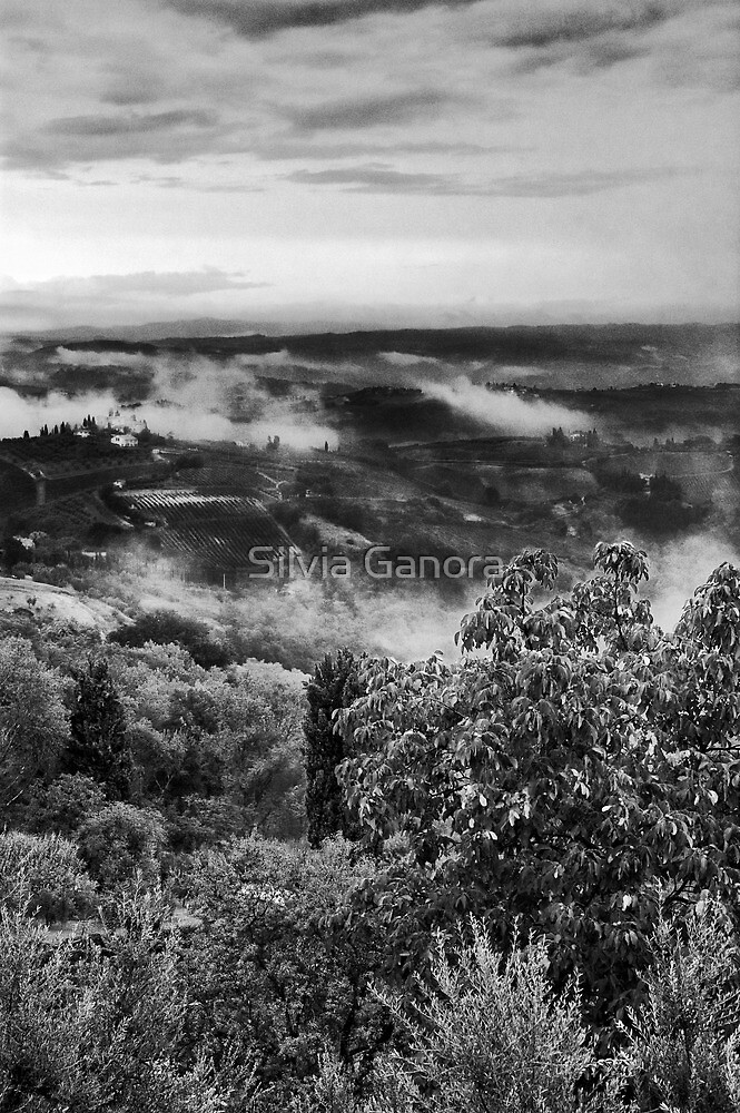 Hills wrapped in mist by Silvia Ganora
