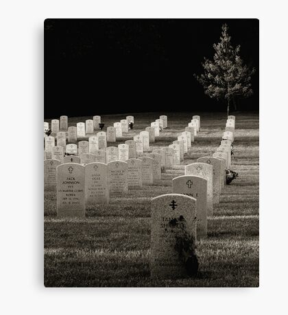 Last of the Day Canvas Print