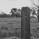 Ancient signpost at Longshaw by derbyshireduck