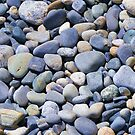 Beach Stones, New Hampshire Coast by Thomas Stevens