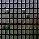 Morning Rain Drops On Fly Screen by ShotsOfLove