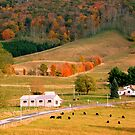 West Virginia In Autumn by ctheworld