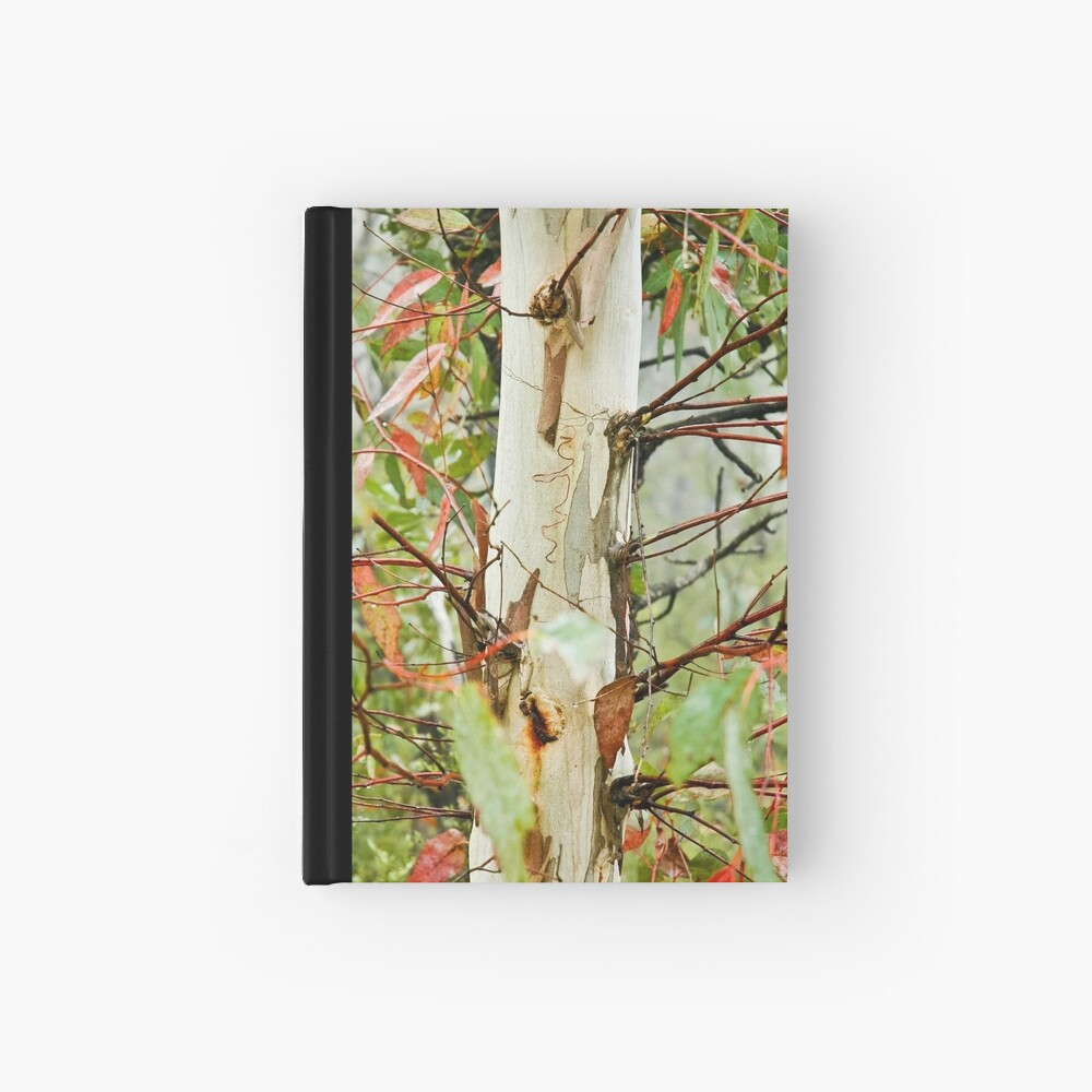 Colours of the bush - Blue Mountains, NSW Hardcover Journal