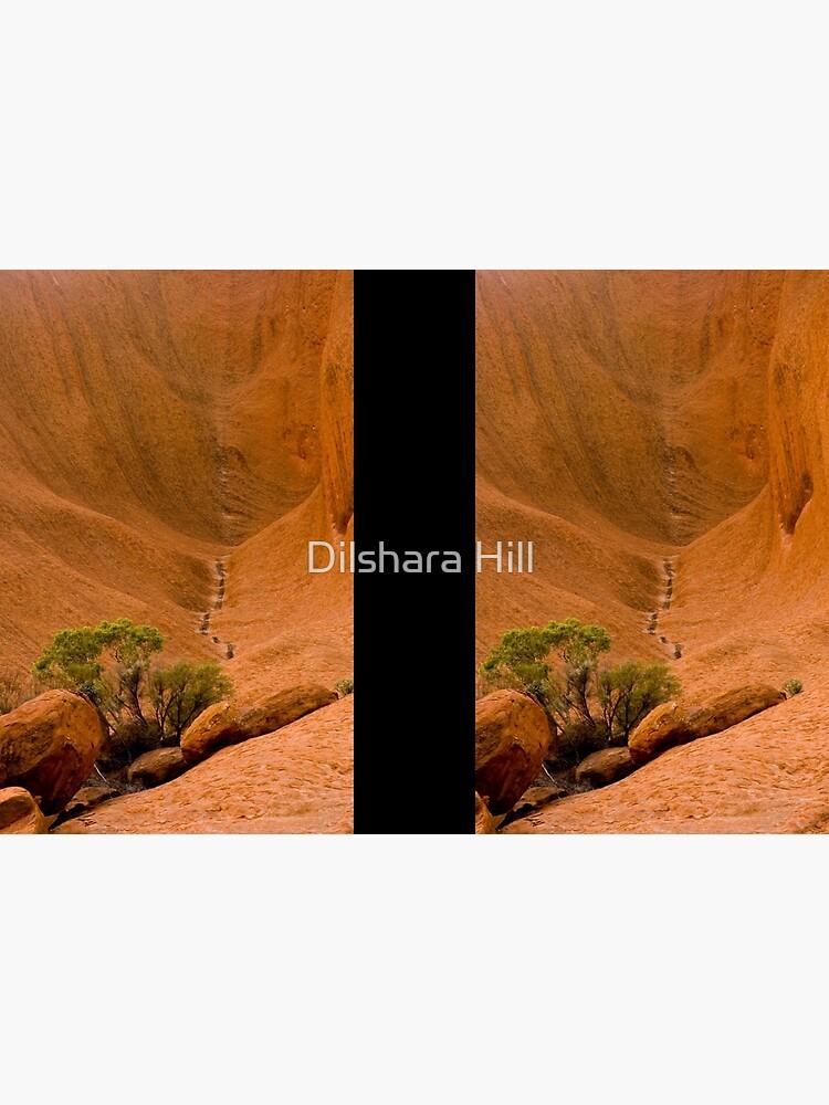Uluru Rock Face by dilshara