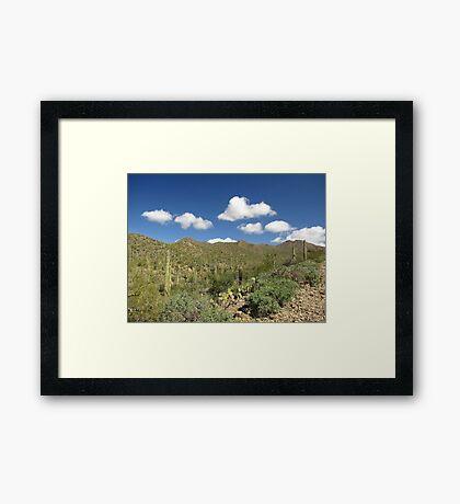 Sonoran Scenery Series ~ 6 ~ Framed Print