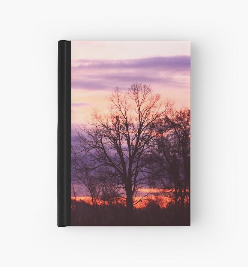 Morning Sunrise by Paul Scott