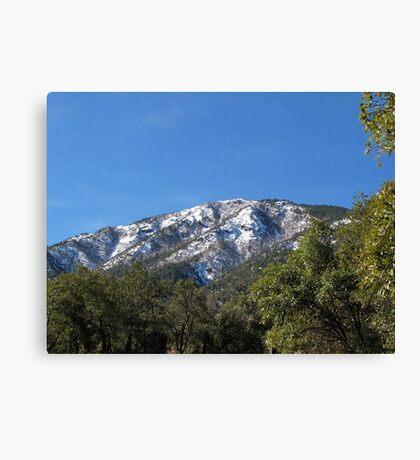 Sonoran Scenery Series ~ 7 ~  Madera Canyon Canvas Print