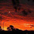 Red Sunset, Camden NSW by JeniNagy