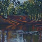 Twin Dams,Kalgoorlie. West Australia by robynart