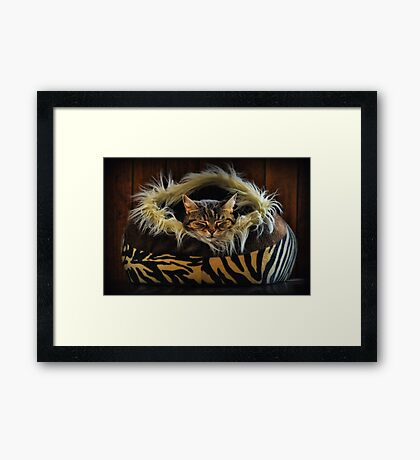 If you want to learn how to relax - study a cat! Framed Print