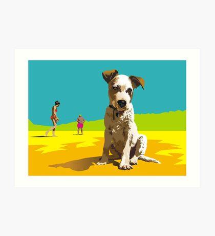 Daisy on Stradbroke Island Art Print