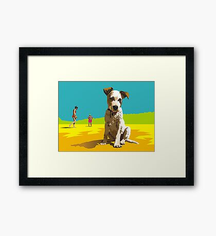 Daisy on Stradbroke Island Framed Print