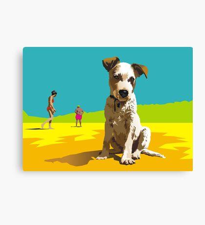 Daisy on Stradbroke Island Canvas Print