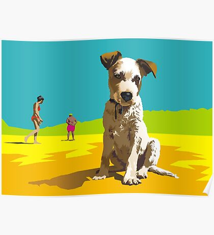Daisy on Stradbroke Island Poster