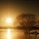Sunbirth Over Taupo Lake  by Peter Kurdulija