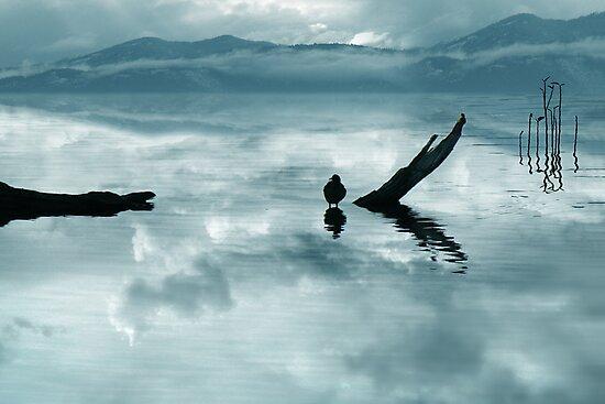 serenity by John Poon