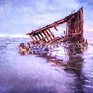 A Stormy Peter Iredale by Kay Brewer