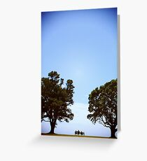 twiddle dee, pohutukawa tree Greeting Card