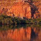 Ochre Dawn by Reef Ecoimages