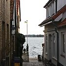 A small lane in Schleswig-Holm by Dirk Pagel