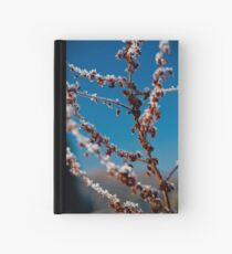 Icing Hardcover Journal