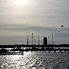 The City Port of Schleswig by Dirk Pagel