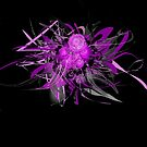 Lilac flower black by mjvision Mia Niemi by mjvisiondesign