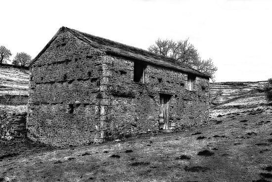 Dales Barn by Trevor Kersley