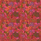Tangerine garden by hdettman