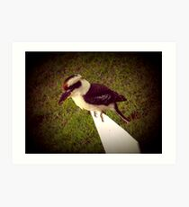 Kevin the Kookaburra Art Print