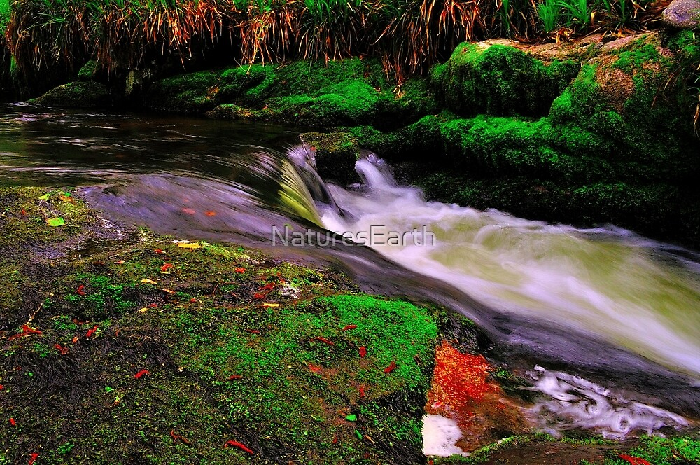Devil`s Jump Valley  by NaturesEarth