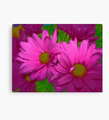 Hot Pink Duo Canvas Print