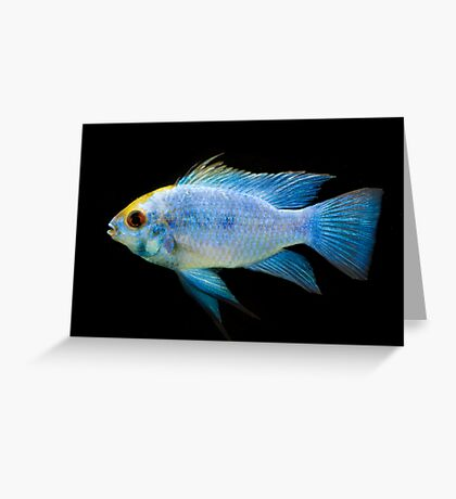 Electric Blue Greeting Card