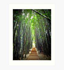 The Bamboo Avenue Art Print