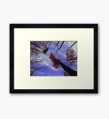 The View Above 3 Framed Print
